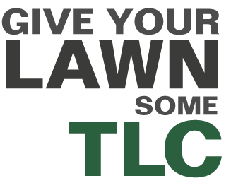 Give your lawn some TLC